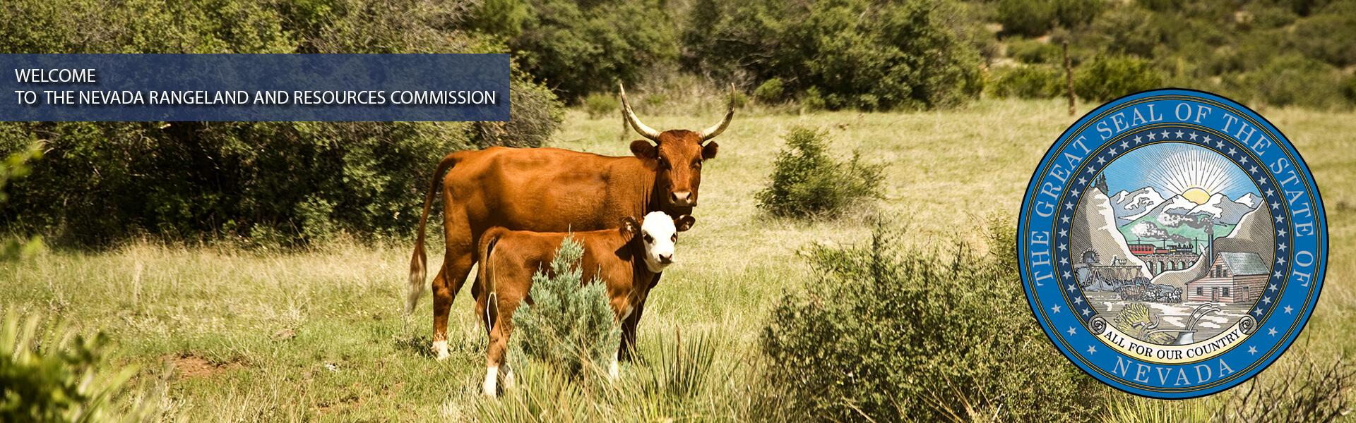 Nevada Rangeland home image 1 blue